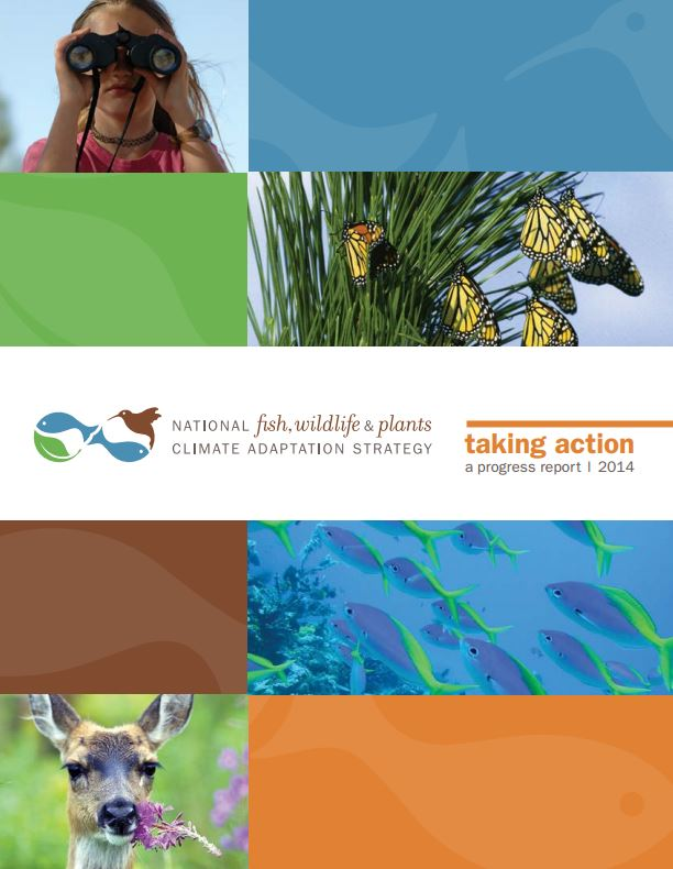 taking-action-progress-report-2014-cover