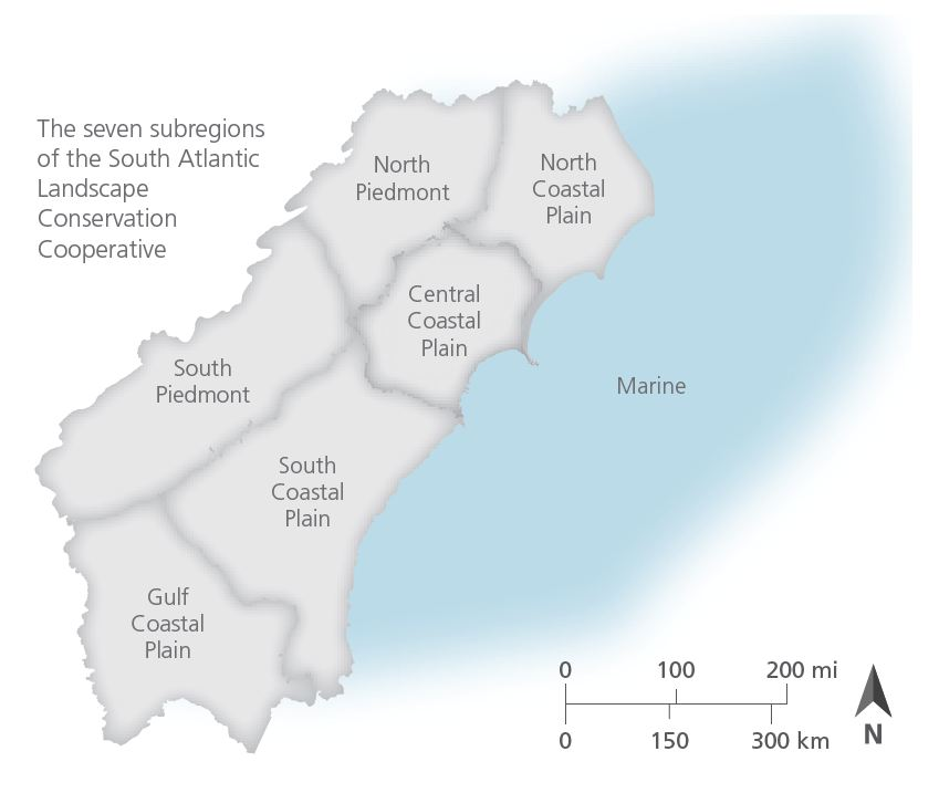 Correcting a map error in the State of the South Atlantic – South ...